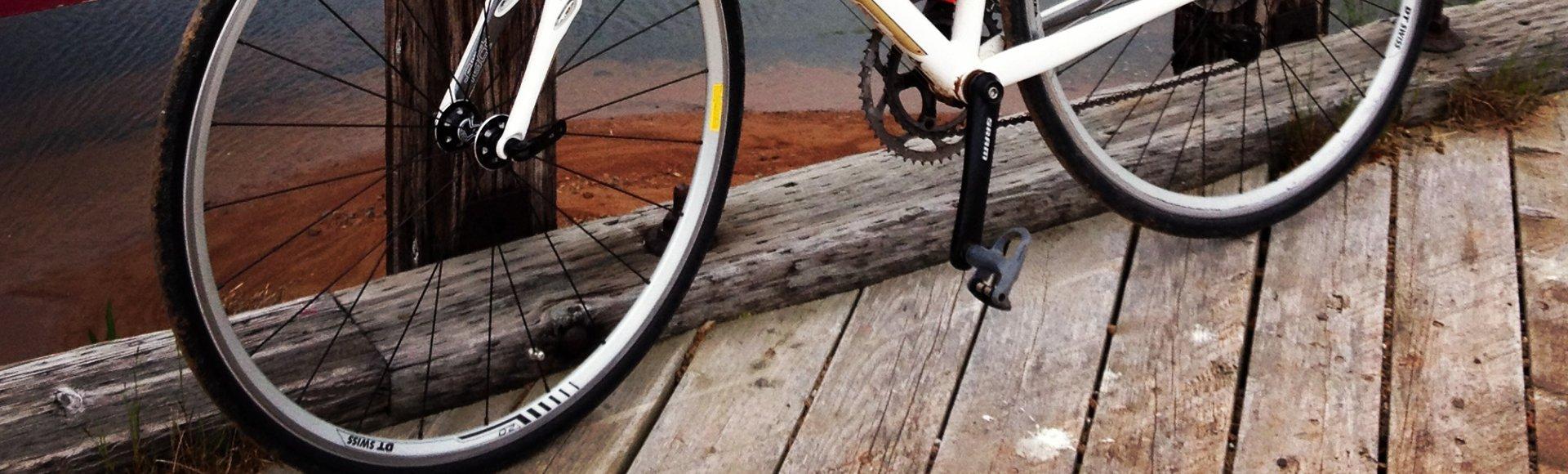 Polizza Bicicletta